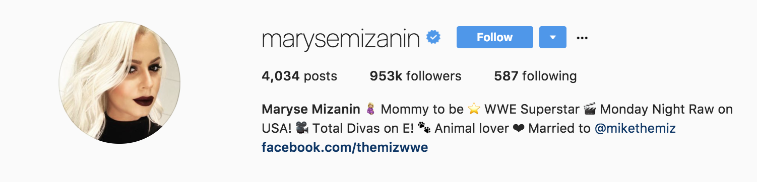 marysemizanin instagram profile